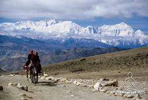 L'ultimo Tibet
