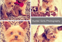 Photography - huntergirls.com
