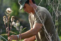 Gardening-Herbal & Medical