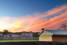 Sunsets and sunrises / A range of sunsets and sunrises around New Zealand