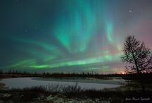 Polar Lights / Аurora Рolaris - Polar Lights  Северное Сияние - Полярное сияние http://www.arctic-info.com/