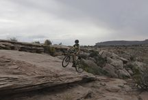 XC Mountain Biking / Trailcraft Pineridge 24 on the Trails