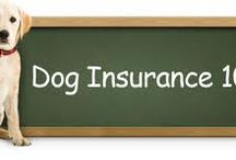 Pet Insuranceuk
