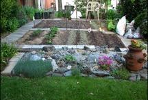 veggie patch / voorbeelden van leuke tuinen en planten