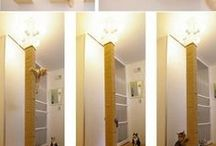 Cat foirniture