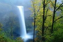 Waterfalls  / by David Brown