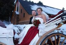 Colorado Wedding Venues / Blanche's Place introduces you to several of our favorite Colorado wedding venues.