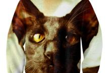 My cats Benja & Louis <3