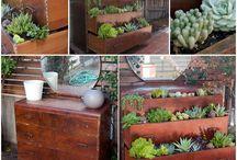 creative garden / garden art / by Anita Morena