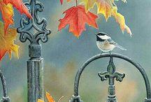 Ősz (Fall)