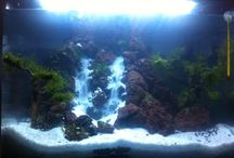 My Aqua / Cuma sekedar hobi