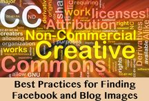 Social Media Resources & Best Practices / by Jenny Thelen