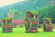 Taiwan AND Japan / for Xmas