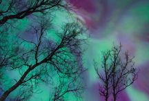 THE NORTHERN LIGHTS / The most beautiful thing on earth!