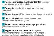 Agro tudo / Agronomia, agroecológica e afins!