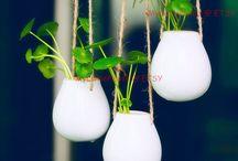 Pflanzen und gärtnern