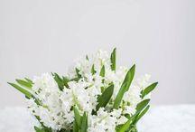Flower arrangements for summer