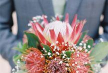 #Exotic #Hot #Weddings