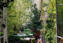 little parisian garden / balcony