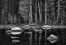 Photographer - Ansel Adams