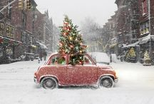 Cars In Snow / by Mark Aikman