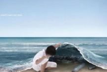 Stop Polución