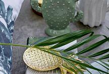 Cactus déco !