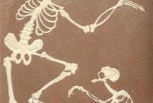 van dood en leven / by Hayet de Bont