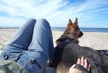 Relaks / Późne lato na plaży
