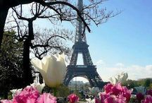 Fly to Paris for lunch / by Cheryl Ann Zlomke