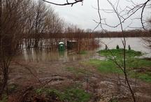 Flood of 2013 / Morris, il 60450
