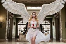 livro Anjos
