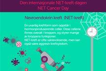 Infografikk for NET-kreft / Nevroendokrin kreft, NET, er betegnelsen på en gruppe uvanlige kreftsykdommer. Disse er ofte sakte voksende og komplekse.