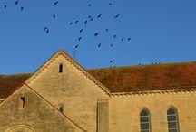 L'abbaye de Noirlac en photos / Les salles de l'abbaye, les jardins