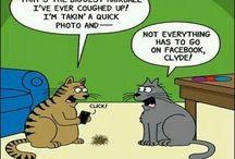 #SocialMediaHumor