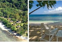 Qamea Resort and Spa Fiji / This boutique resort located on its only private island off the island of Taveuni in the northern part of the Fijian Islands is a dream destination for honeymooners, romantics and diver's.  Only 16 bures and villas cater to only 32 guests at at time.  If you are looking for romance and water sports, Qamea may be the perfect choice for you! / by My Vacation Lady Mindy Gilbert