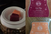 Scentsy Mixology / Scentsy wax bar combinations I've enjoyed.