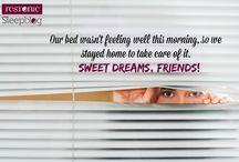 Sleep News / by Restonic Mattress