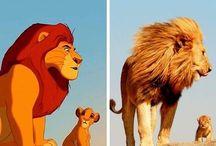 Disney in real life