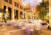 Live Greenery / Looking for greenery to enhance your event? We have over 2 acres of live indoor and outdoor plants. From our elegant Kentia Palms to our fun and whimsical Juniper Corkscrew and traditional Japanese Maples.   http://www.standardpartyrentals.com/product-category/greenery/