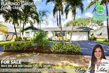 Cooper City Homes For Sale by Broker Patty Da Silva of Green Realty Properties
