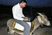 Crazy Boy Using Laptop While Riding On A Donkey