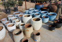 Flower Pots / Alldredge Gardens Midland Tx