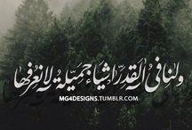 حكمة بالعربي