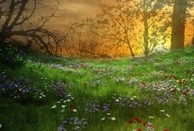 ~where the wild flowers grow~