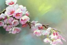 Blossom Paintings