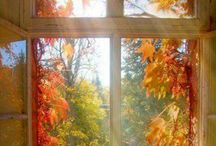 Осеннее окно