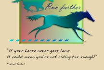 Horse Quotes / Quotes about horses. Horse quotes and sayings.
