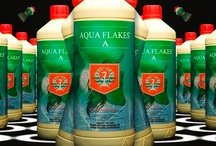 House & Garden Nutrients / House and Garden Nutrients, the most advanced nutrients available for indoor gardening today. Used in all types of soil & hydroponic systems, The House and Garden Van De Zwaan nutrients line offers super concentrated products to gardeners that have been improved upon over time.  House & Garden Van De Zwaan has gradually become the most reliable and successful supplier and producer of plant fertilizers.