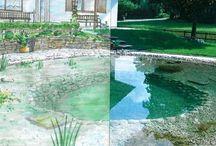 Garten: Maschinenring Gartenplanung, -bau & -gestaltung